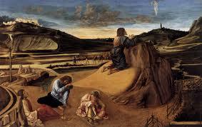 Bellini agony